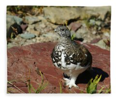 White-tailed Ptarmigan Fleece Blanket