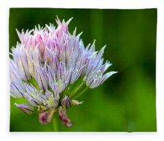 Wild Blue - Chive Blossom Fleece Blanket