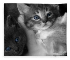 Wild Hearts Fleece Blanket