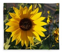 Wild Sunflower Fleece Blanket
