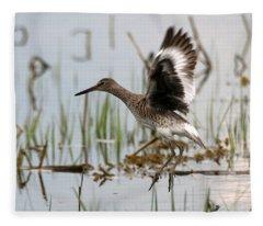 Willet Taking Flight Fleece Blanket