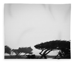 Windswept Shoreline Fleece Blanket