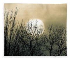 Winter Into Spring Fleece Blanket