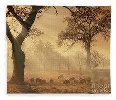 Winter's Gold Fleece Blanket
