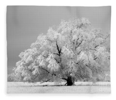 Winter's Majesty II Fleece Blanket