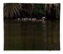 Wood Duck And Ducklings Fleece Blanket