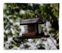 Woodpeckers At Dinner Fleece Blanket