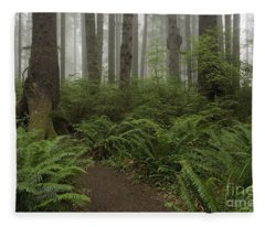 Woods Trail Fleece Blanket