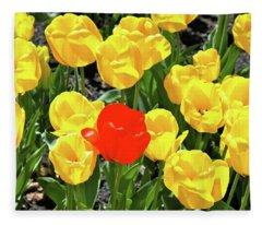 Yellow And One Red Tulip Fleece Blanket