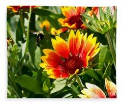 Yellow And Red Gaillardias And Bee Fleece Blanket