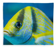 Atlantic Porkfish Fleece Blanket