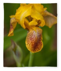 Yellow Bearded Iris Fleece Blanket