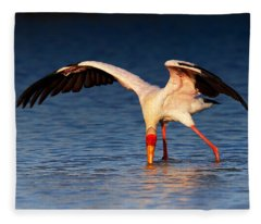 Yellow-billed Stork Hunting For Food Fleece Blanket