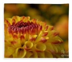 Yellow Dahlia Red Tips Fleece Blanket