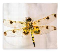 Yellow Dragonfly Pantala Flavescens Fleece Blanket