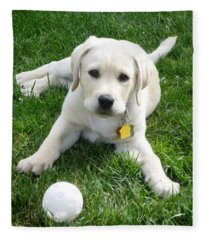 Yellow Lab Puppy Got A Ball Fleece Blanket