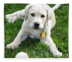 Yellow Lab Puppy Got A Ball Fleece Blanket