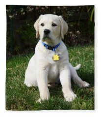 Yellow Lab Puppy Standing Guard  Fleece Blanket