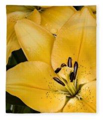 Yellow Lily Fleece Blanket