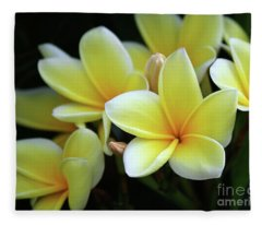 Yellow Plumeria Cascade Fleece Blanket