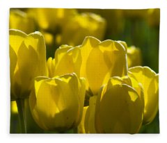 Yellow Tulips  Fleece Blanket
