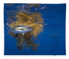 Yellowfin Tuna And Kelp Nine-mile Bank Fleece Blanket
