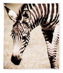 Zebra Foal Sepia Tones Fleece Blanket