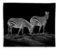 Zebra's  Fleece Blanket