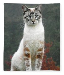 Zing The Cat Fleece Blanket