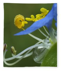 Close View Of Slender Dayflower Flower With Dew Fleece Blanket