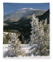 Frosted Pines Fleece Blanket