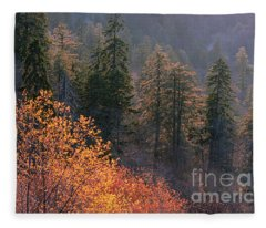 Great Smoky Mountains Morning Fleece Blanket