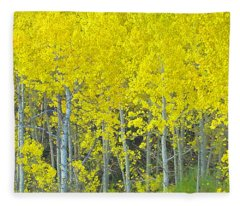 Aspen Power Fleece Blanket