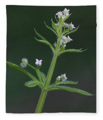 Cleavers Fleece Blanket