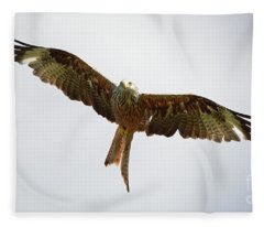 Red Kite In Flight Fleece Blanket