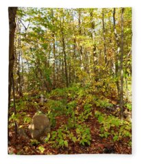 A Beautiful Pee Spot Fleece Blanket