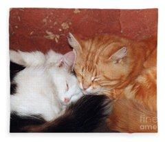 A Loving Couple- Pandute And Liutukas Fleece Blanket