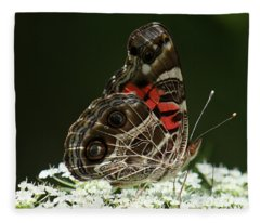 American Painted Lady Butterfly Fleece Blanket