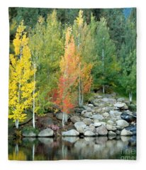 Aspen At Montreux Fleece Blanket