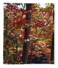 Autumn's Delight Fleece Blanket