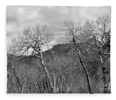 Black And White Aspen Fleece Blanket