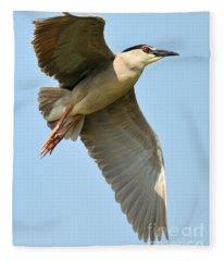 Black Crown Night Heron Fleece Blanket