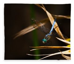 Blue Dasher Dragonfly Fleece Blanket