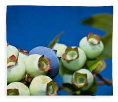 Blueberries And Sky Fleece Blanket