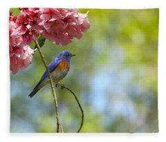Bluebird In Cherry Tree Fleece Blanket
