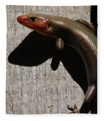 Broad-headed Skink On Barn  Fleece Blanket