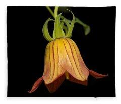 Canary Island Bellflower - Beautiful Orange Flower Fleece Blanket