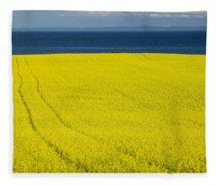 Canola Field, Guernsey Cove, Prince Fleece Blanket