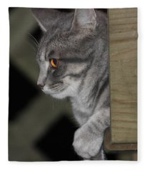 Cat On Steps Fleece Blanket