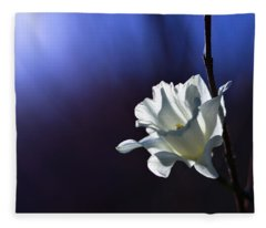 Daffodil Light Fleece Blanket